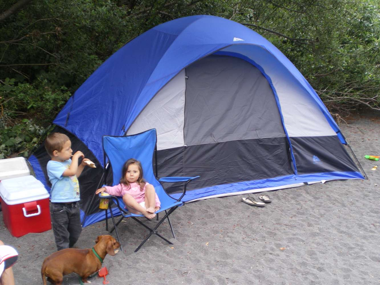 & Review of Ozark Trails 13u2032 X 10u2032 Dome Tent | Ozark Trail Tents